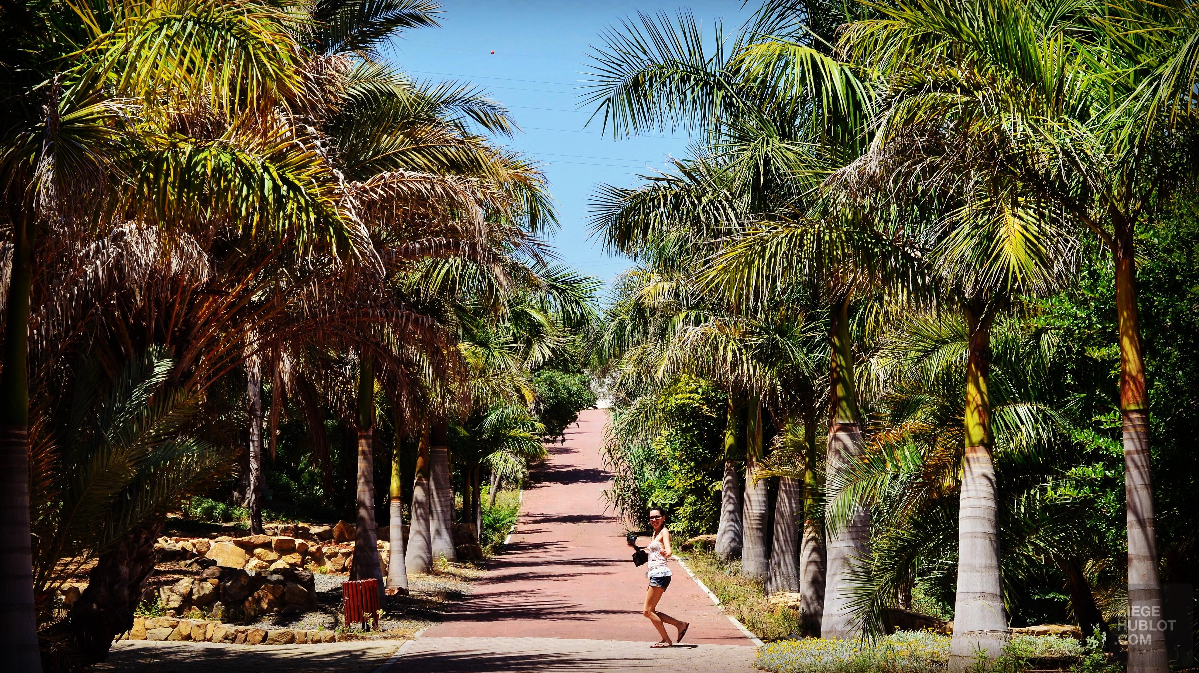Merveilleuse Malaga - videos, hotels, europe, espagne, entete-de-categorie, cafes-restos, cafes, a-faire