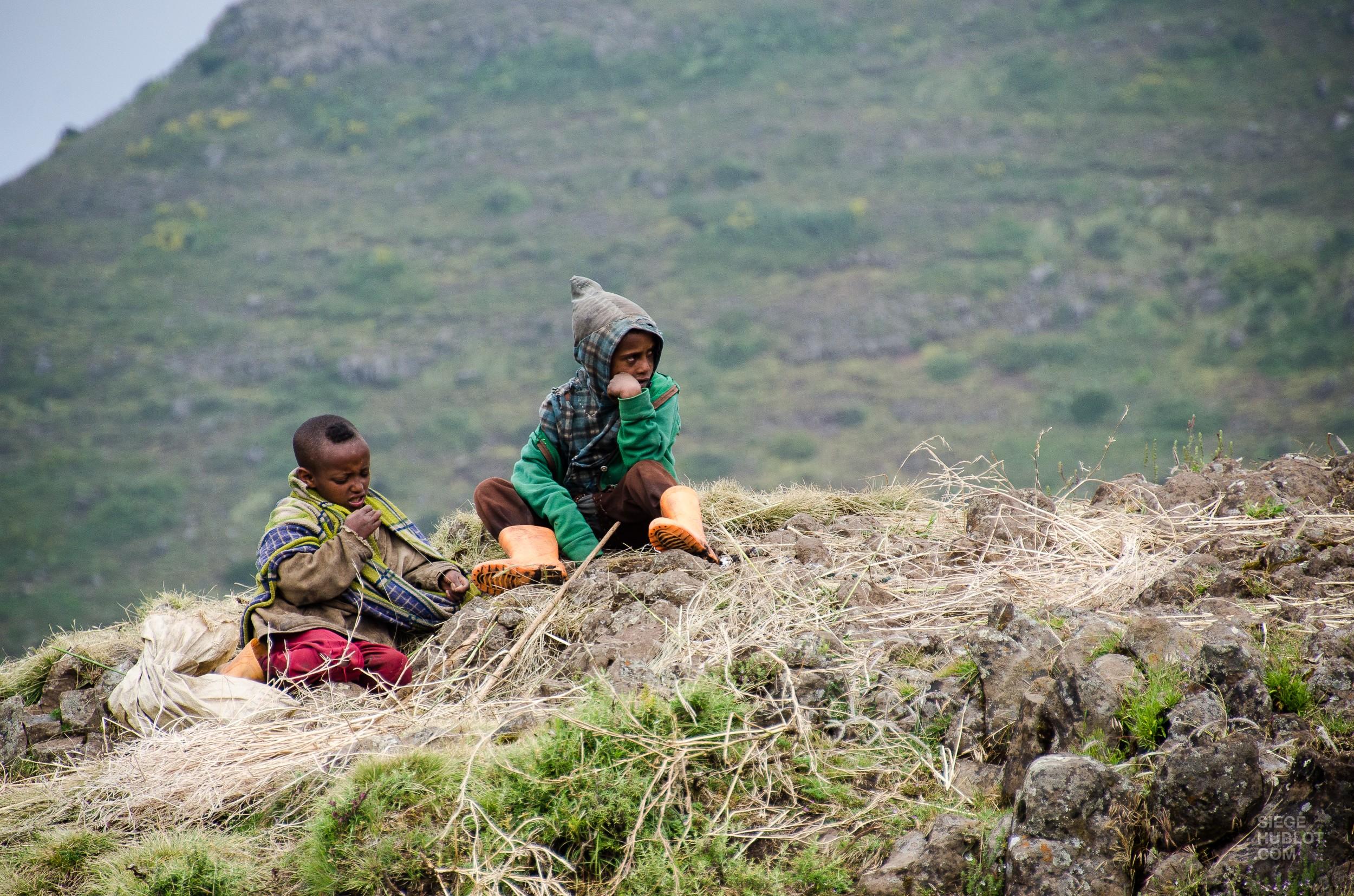 enfants bergers - des babouins dans les nuages monts simien ethiopie - Des babouins dans les nuages Monts Simien Ethiopie - afrique, ethiopie