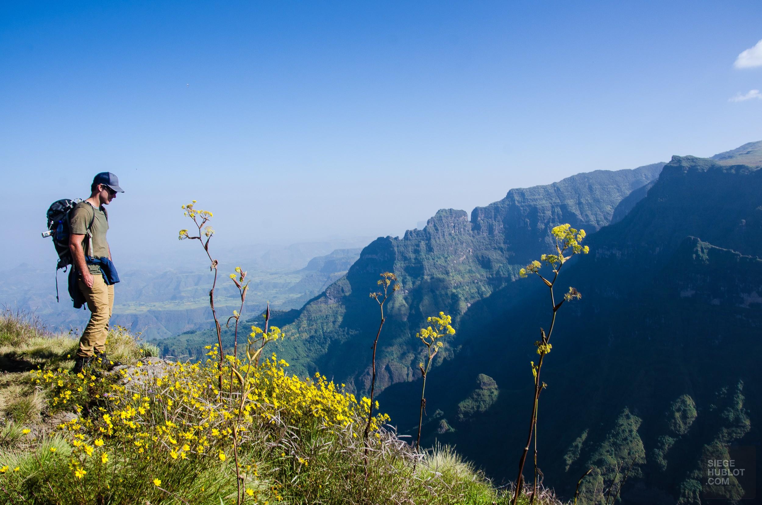 montagne flanc - des babouins dans les nuages monts simien ethiopie - Des babouins dans les nuages Monts Simien Ethiopie - afrique, ethiopie