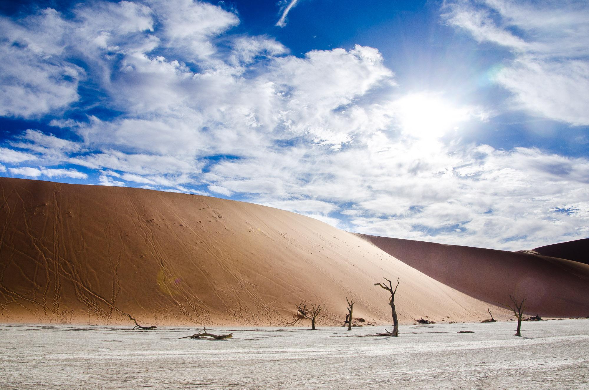 arbre petrifie dune ciel bleu - deadvlei - le desert du namibie - afrique, namibie