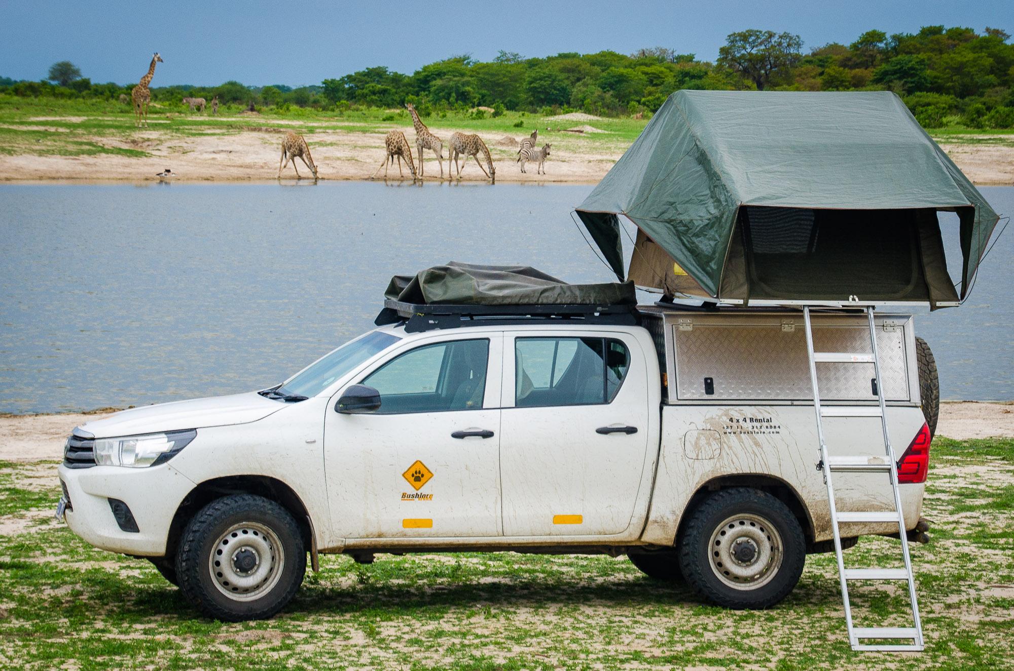 camping girafe - parc national de hwange - Zimbabwe, les chutes Victoria et plus encore! - afrique, zimbabwe