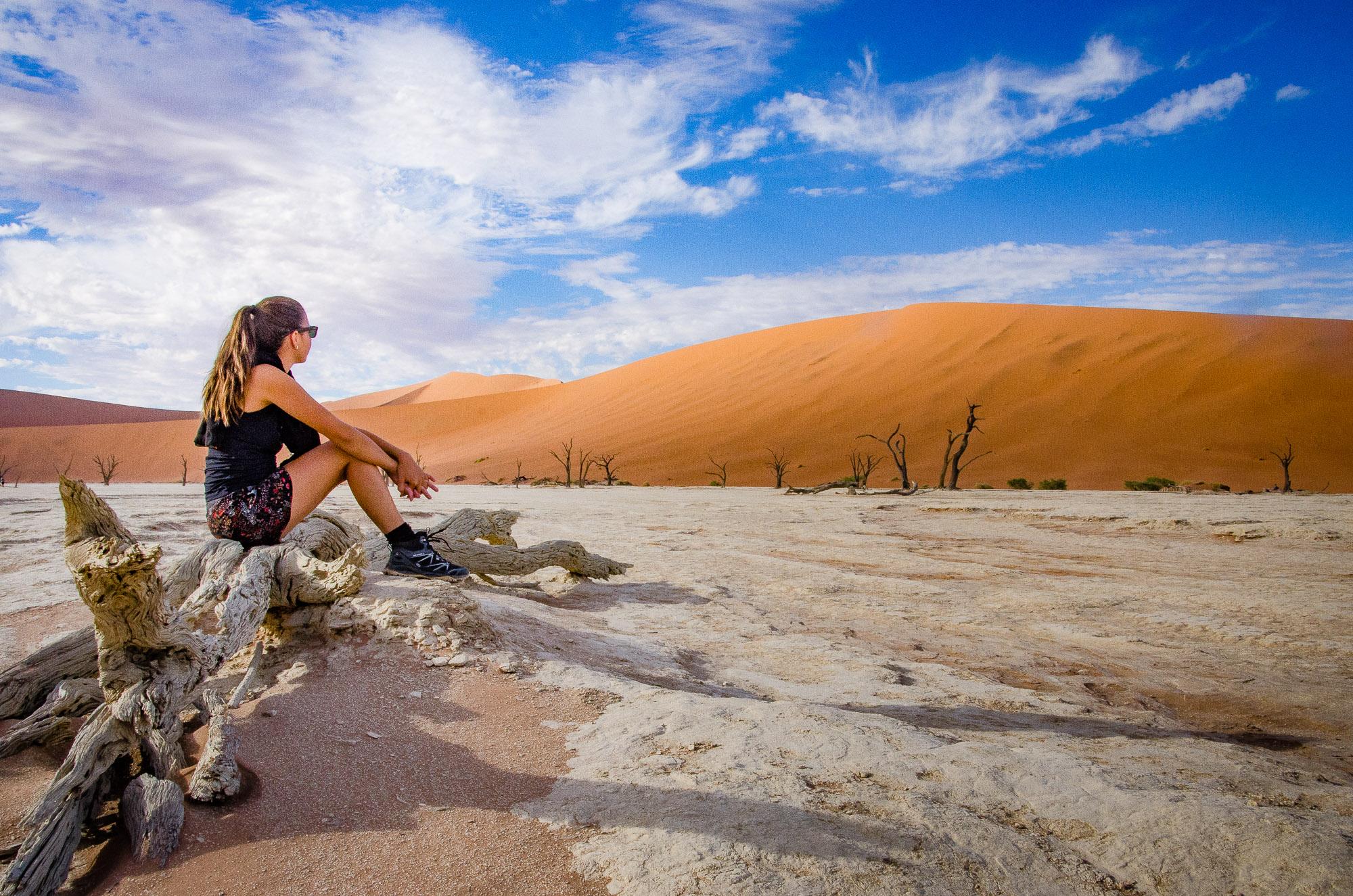 desert arbre petrifie - deadvlei - le desert du namibie - afrique, namibie