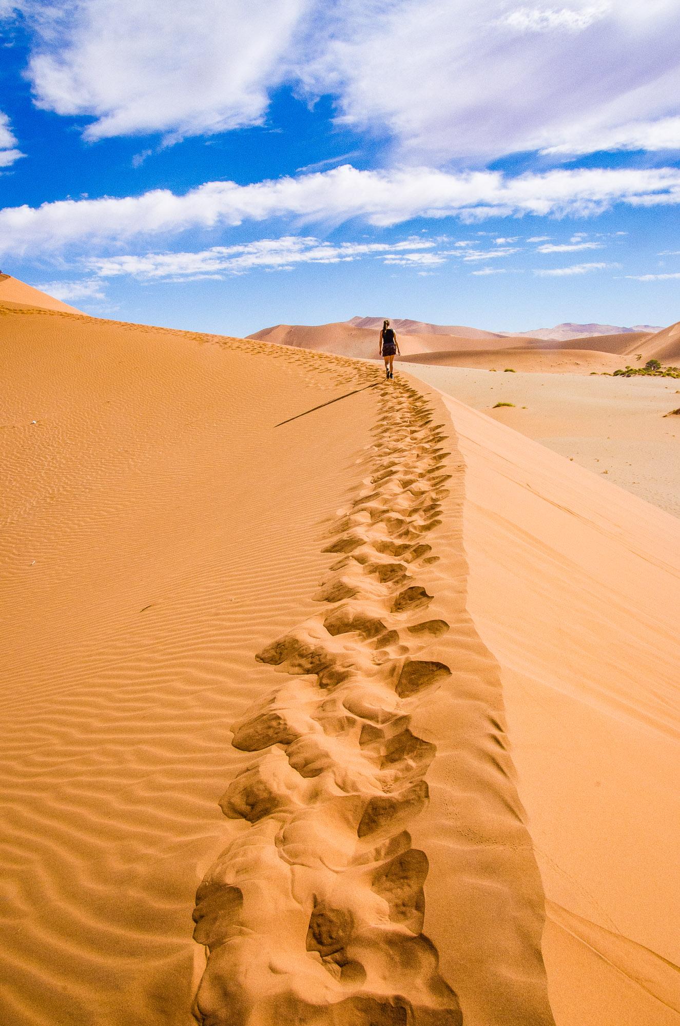 dune randonne escalader 1 - sossuvlei - le desert du namibie - afrique, namibie